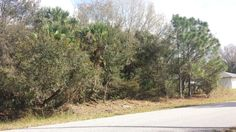 Great Florida lot in growing North Port.  Only listed at $5,500