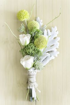 Billy button and dusty miller boutonniere