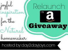 Exciting Announcement {Day2dayjoys.com Relaunch & Giveaway}