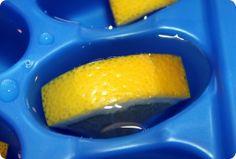 Homemade garbage disposal cleaners - vinegar and lemon cubes. So smart!