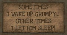 rustic country homes decor, funny signs, primit wood, funny rustic signs