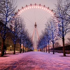 PANTONE Color of the Year 2014 - Radiant Orchid - London Eye