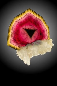tourmaline slice is from Tsitondroina. It is 9.6 cm across. Laurent Thomas specimen. Photo by Jeff Scovil.