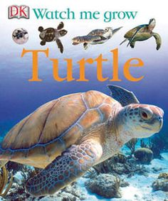 Watch Me Grow: Turtle - read online