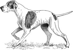 **FREE ViNTaGE DiGiTaL STaMPS** dog digit stamp, digital stamps, dog pictures, dog stamp