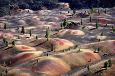 Painted Dunes, Cinder Cone Trail, Lassen Volcanic National Park by ThorsHammer94539, via Flickr