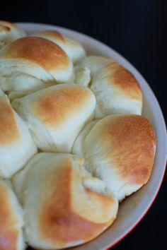 Honey Yeast Dinner Rolls | Beantown Baker