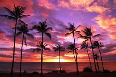beauti landscap, happi place, color, hawaii sunset, sunris