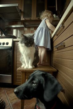 girl, cat and dog