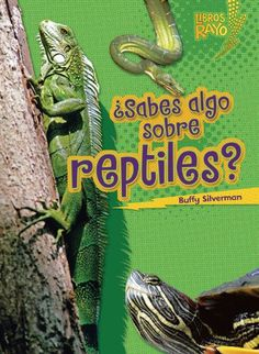 ..Sabes algo sobre reptiles?/ Do You Know about Reptiles? (Libros Rayo - Conoce Los Grupos De Animales /Lightning Bolt Books T - Meet the Animal Groups)) (Spanish Edition) by Buffy Silverman,http://www.amazon.com/dp/0761393781/ref=cm_sw_r_pi_dp_Wmoktb1MZ6R8GBKP