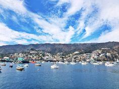 View of #CatalinaIsland #DreamingInBlue