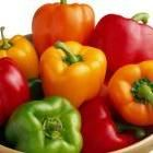 Growing guide for peppers.