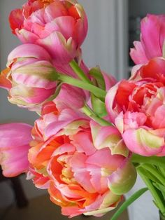 colors, parrot, pink peoni, oranges, tulips