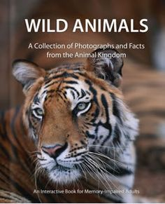 Wild Animals Book Cover