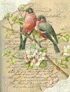 Vintage Birds Printable