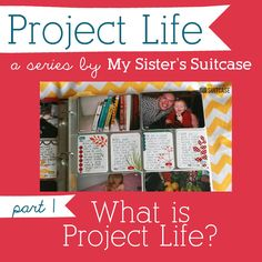 journal, sister suitcas, crafti, organ project, scrapbook idea, suitcases, card, project lifer, true confess