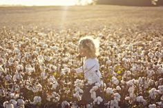 A Warm, Hazy Children's Photoshoot in Alabama Cotton Fields by @Amanda Snelson House | Two Bright Lights :: Blog