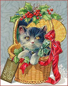 Cat in Basket of Holly--Vintage Christmas Postcard