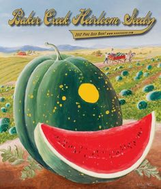 Baker Creek Heirloom Seeds, a great source for heirloom seeds