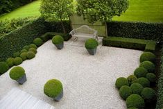 Example of Buxus spheres and loose graded pebbles for the front garden.