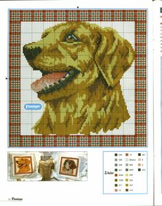 stitch dog, dog chart