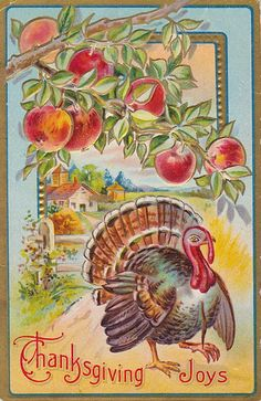Thanksgiving Post Card