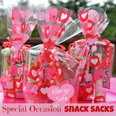 Allergy Safe Special Occasion Snack Packs for Class Parties birthday toddler kid holiday peanut free treats goody celiac gluten epi pen allergic dairy wheat