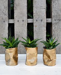 Trio of shabby glam upcycled crushed gold can diy planter.