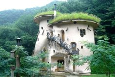 Love the the shape, the stairs, & the living roof!