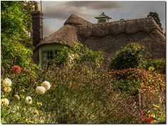 Gorgeous French Cottage and garden
