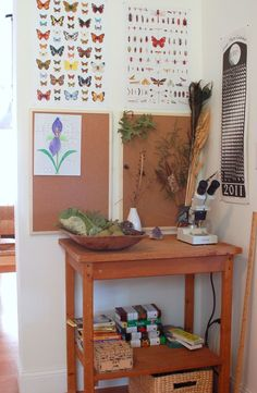 Nature area in one part of the house. {love.}.It doesn't really take a lot of room up  I love the fact things collected are kept on corkboard and in bowls and the stereoscope is already out.