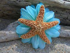 Sugar Starfish Floral Hair ClipMALIBU by sandnsurfcreations, $12.95