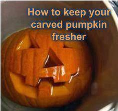 Keep your carved halloween pumpkin fresher longer!