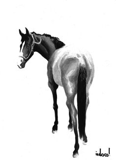 Image detail for -horse watercolor by hurulla traditional art paintings illustration ...