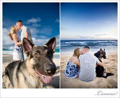 cute engagement portrait with dog