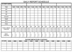 nurs school, nurs student, nurs brain, nurs educ, daili report, report schedul, nurs form