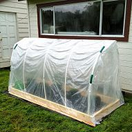 A polytunnel for your plants.