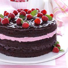 Raspberry Fudge Torte Recipe from Taste of Home