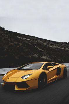 Gold Aventador