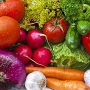 Will Certain Foods Help Heal Ligaments and Tendons? | LIVESTRONG.COM