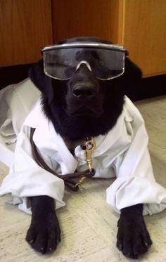 Lab safety lab
