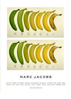 MJ & JT - natural colour scale