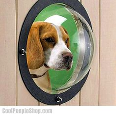 $30.65 Fence Window for Pets | Cool People Shop Dogs are curious, they want to know what's happening out there. Fence Window for Pets can make that possible. Help satisfy their curiosity and make it possible for them to have a peek. The Pet Peek window is a durable, clear, hard acrylic dome 9.5 Inch in diameter and 5 Inch deep, with a black trim-ring and all necessary hardware for easy do-it-yourself installation into your wooden or vinyl fence.