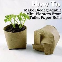 Easy to make planters. Reduce, reuse, recycle
