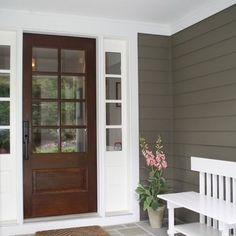 Door Stain and Paint Color