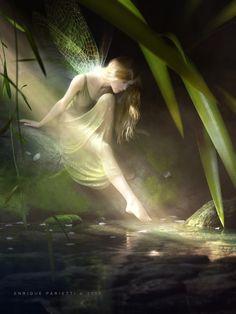 **My Enchantments toe, fantasi, fairies, pool, pixi, fairy art, light, elv, sun rays