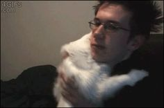 cat gifs, cute/funny cats, the best cat gif, cute cat gif, cute gif, cat hug gif, gif cats, kitty gif, cute animal gifs