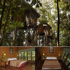summer camp treehouses.