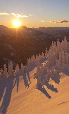 Ultimate Ski Resort Getaway at Whistler