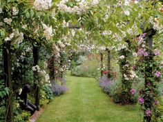 Rose Pergola: A rose-covered pergola gives height and enclosure as well as rich color and perfume. A structures such as a pergola defines the pathways and entrances to different spaces in your garden. (DK - Garden Design